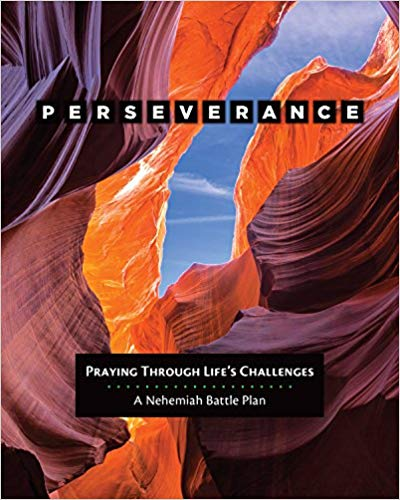 Perseverance: Praying Through Life's Challenges by Donna Pyle